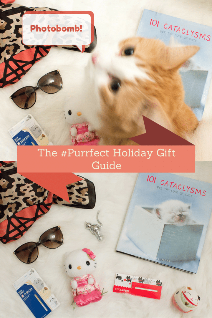 The #Purrfect Holiday Gift Guide